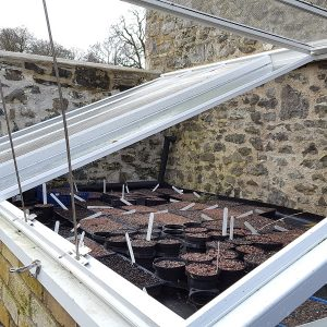 aberglasney workshops with the head gardener - 6 outdoor propagation, cold frames, cuttings and seed