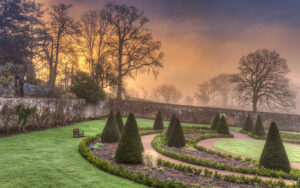 Aberglasney Upper Walled Garden early sunrise with morning mist